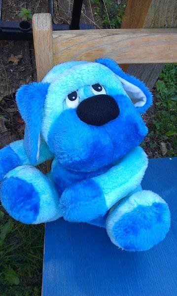 chien bleu 4 Auxonne (21)