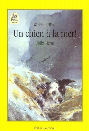 Un chien a la mer ; une sacree tempete 2 Saint-Sauveur (80)