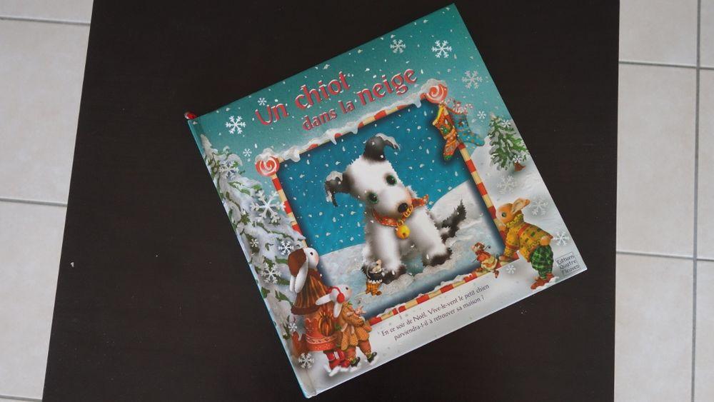 Un chiot dans la neige 3 Hyères (83)