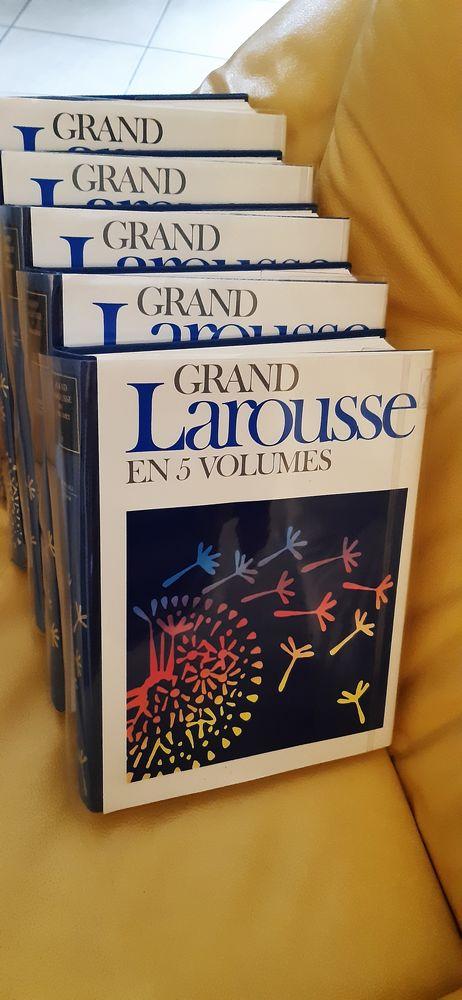 Collection Larousse en 5 volumes et polars  15 Saint-Alban (22)