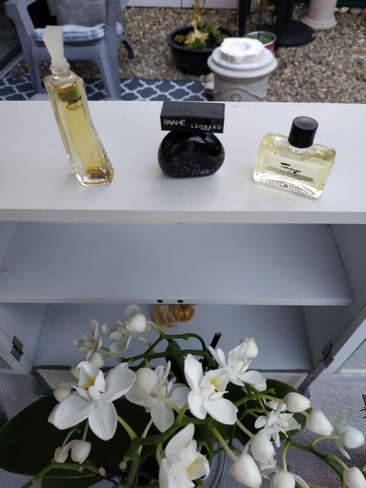Collection miniatures de parfum LÉONARD, très bon état 15 Barberaz (73)