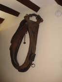 Collier de cheval  15 Hem (59)