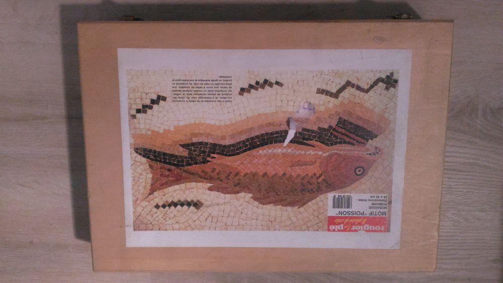 Kit complet mosaique romaine  Rougier et plé  motif poisson 30 Paris 15 (75)