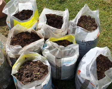 Compost 14 Tourlaville (50)