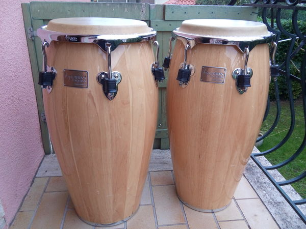 congas Tycoon 450 Luynes (13)