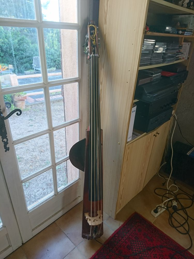 contrebasse stick 6000 Limours (91)