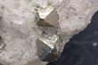 Cristaux de Pyrite octaédriques sur Quartz Mine de Trimouns