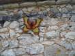 décoration murale métal animalière