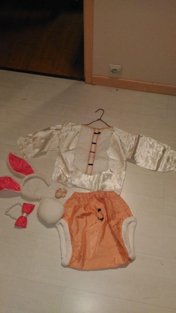déguisement petit lapin enfant 3/4 ans 10 Épinay-sur-Orge (91)