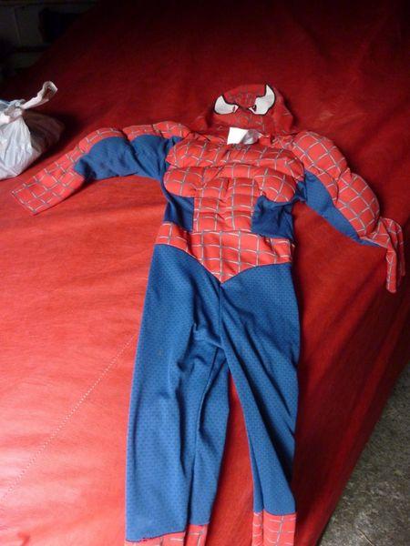 deguisement spiderman 28 Bezons (95)