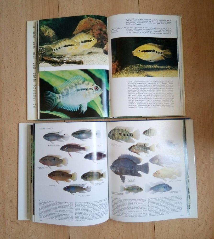 Deux Encyclopédies des poissons d'aquarium 10 Chelles (77)