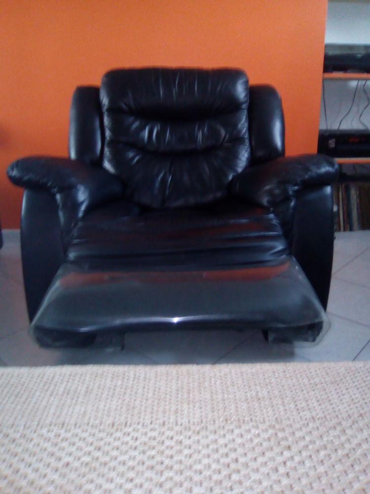 Deux fauteuils relax salon 250 Feuchy (62)