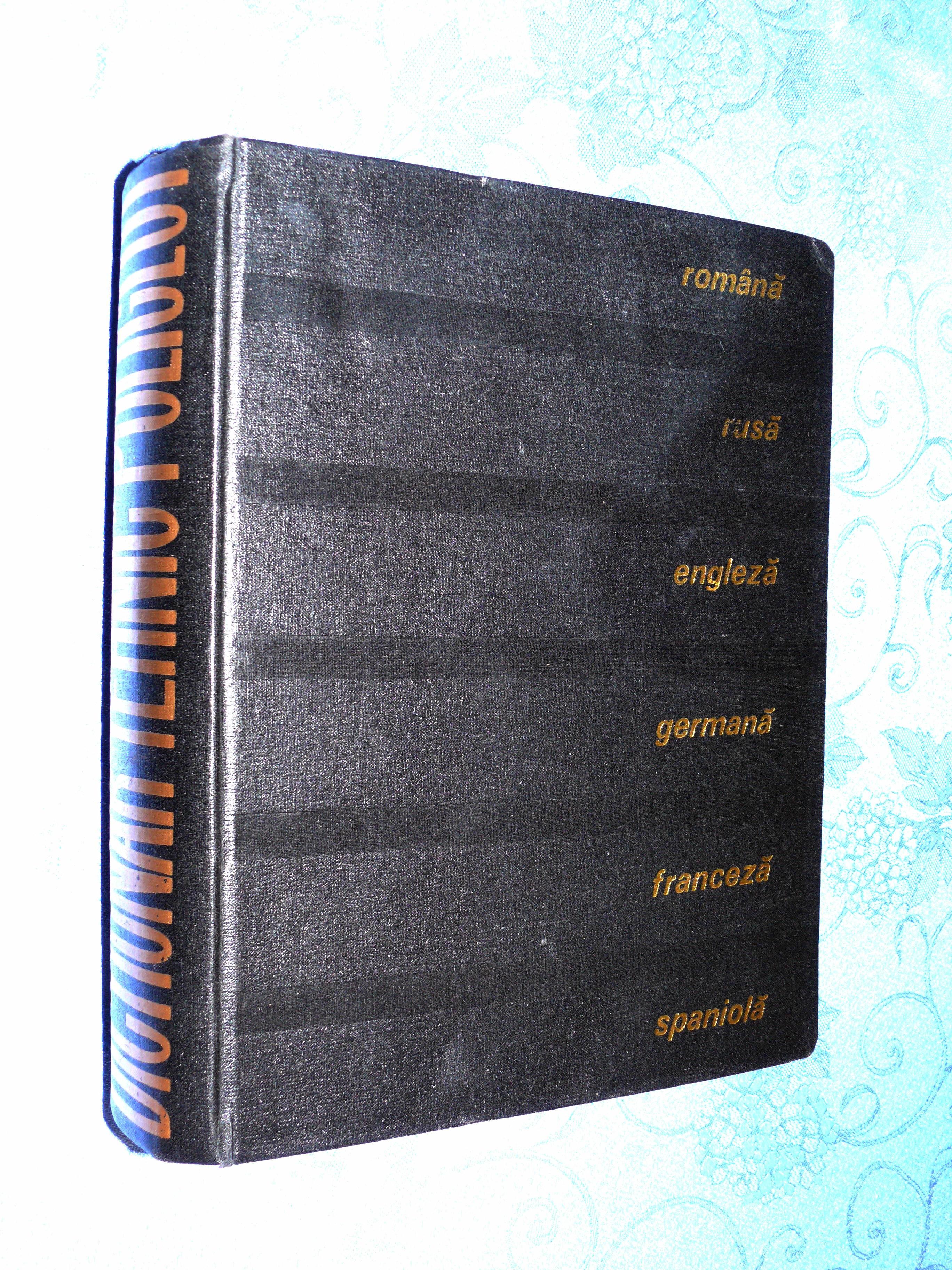 Dictionnaire technique multilingue (6 langues) 25 Saint-Laurent-de-Mure (69)