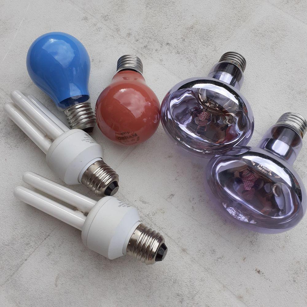 Différentes ampoules 0 Mandelieu-la-Napoule (06)