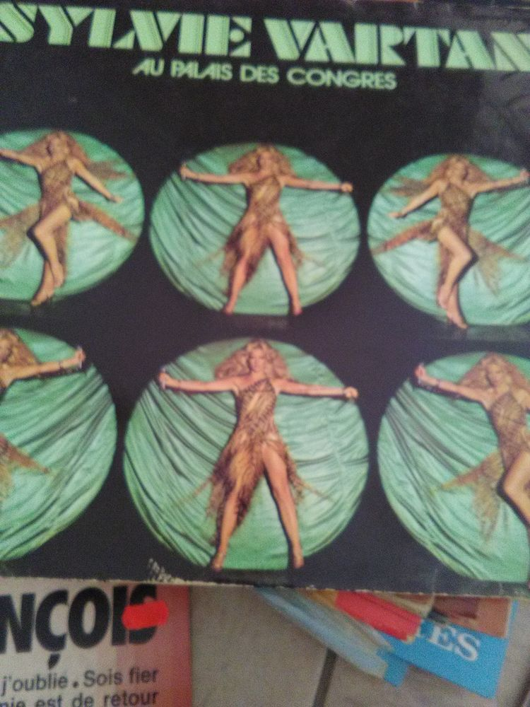 disque vinyles   15 Saint-André-les-Vergers (10)