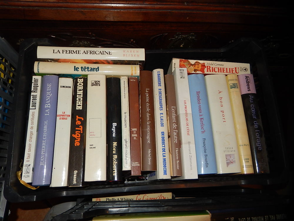 Divers grands livres romans , religion, policiers, politique 1 Hyères (83)