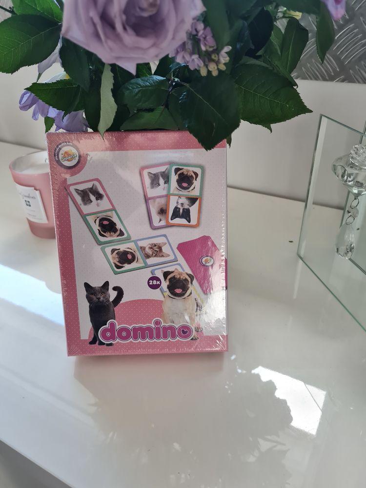 Domino neuf  4 Annonay (07)