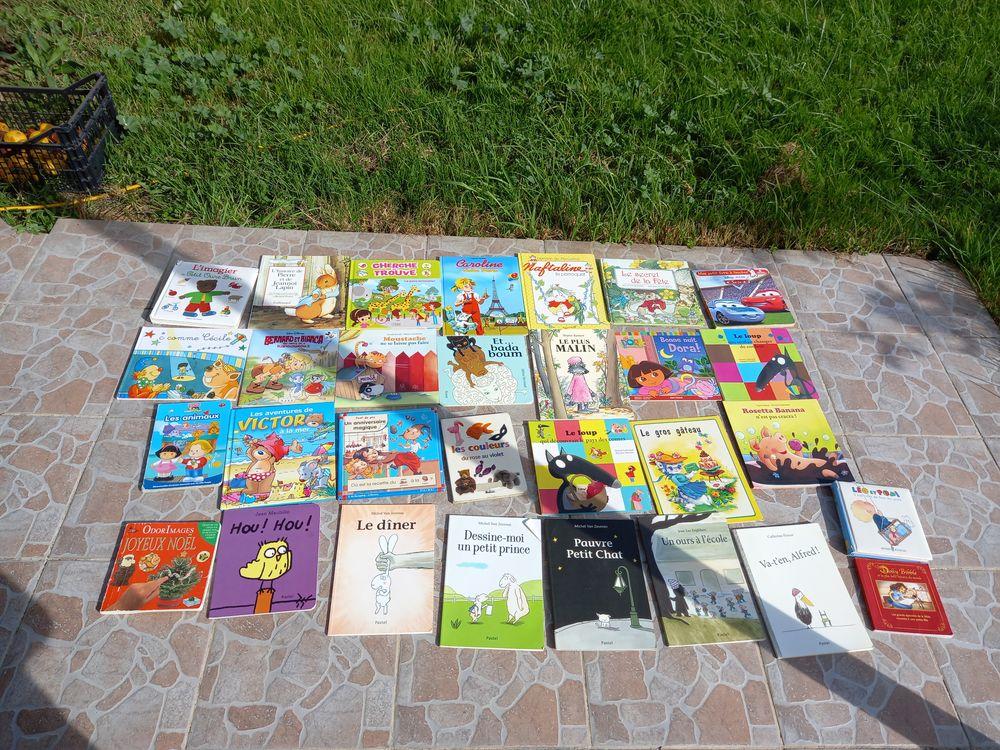 Donne 30 livres enfants  0 Prigonrieux (24)