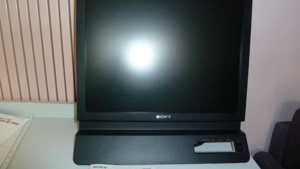 ecran ordinateur Sony 25 Gleizé (69)