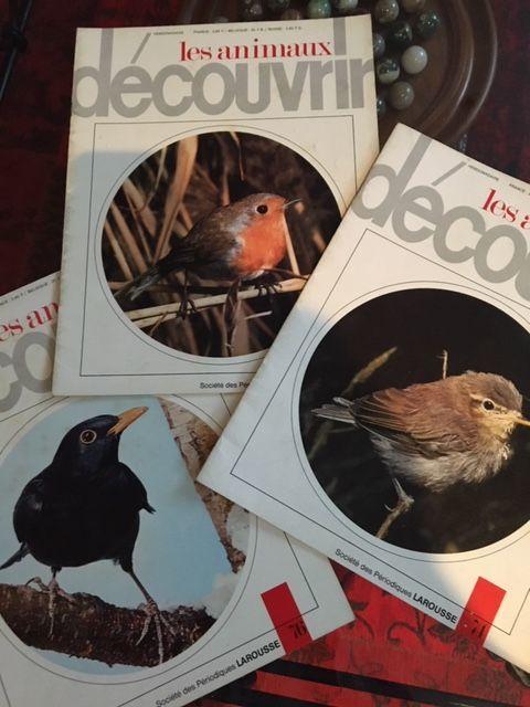 Edition Larousse Les Oiseaux 50 Mérignac (33)