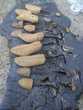 Lot d'Embauchoirs à Chaussures en Bois Déco Atelier