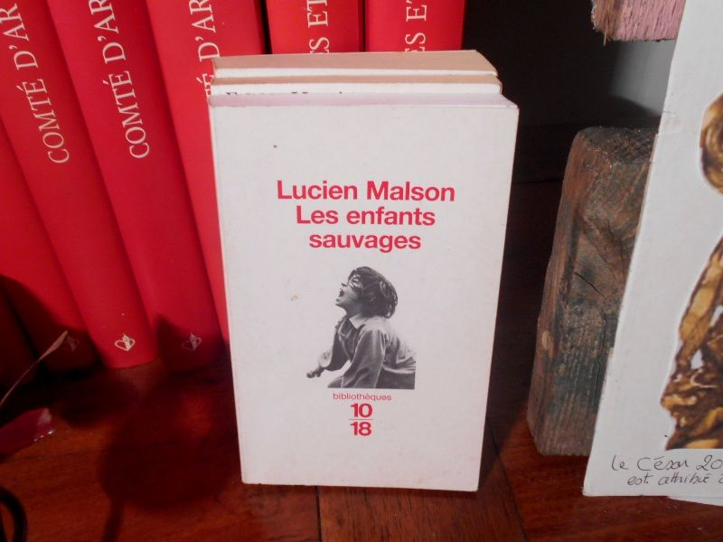Les enfants sauvages Lucien Malson 10/18 5 Monflanquin (47)