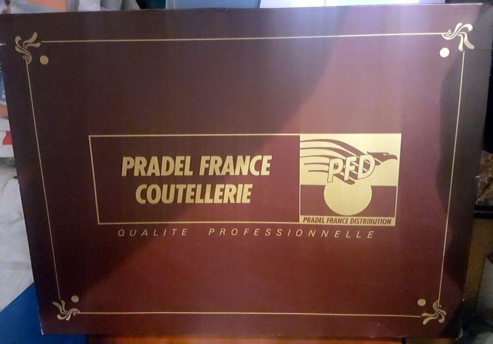 Ensemble de 17 couteaux marque pradel france 39 Brindas (69)