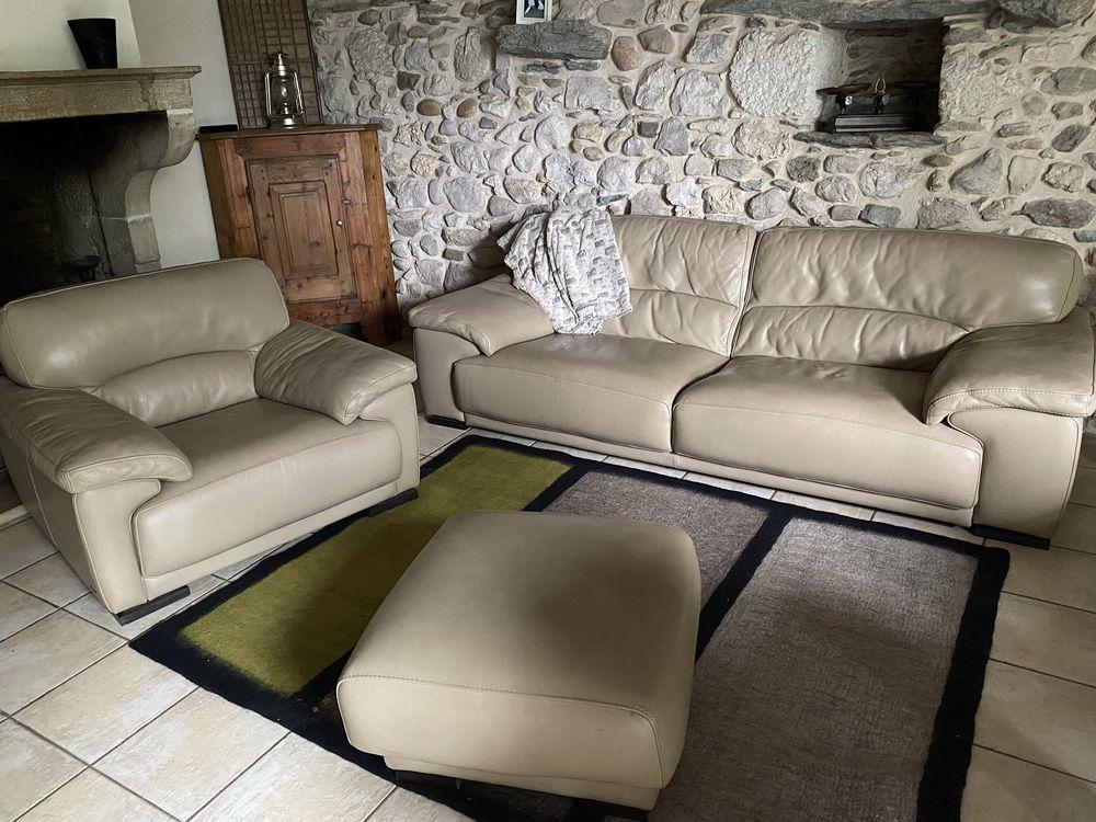 ensemble cuir canapé + fauteuil + pouf Roche Bobois 0 Thoiry (01)