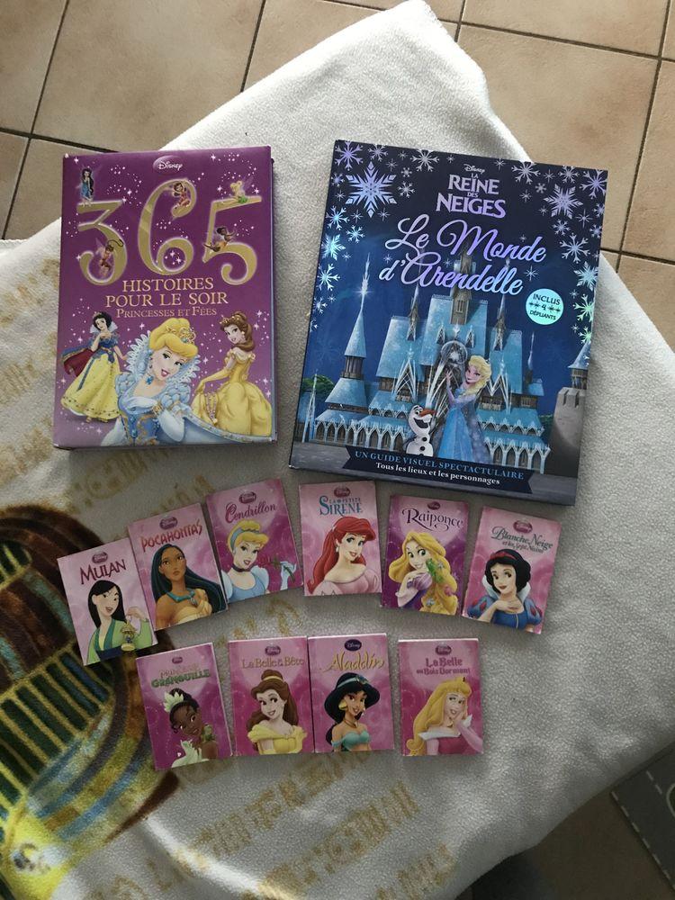 Ensemble de Livres sur le thème des Princesses Disney  0 Saint-Bonnet-de-Mure (69)