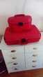 ensemble valise et vanity-case SAMSONITE. Annecy-le-Vieux (74)