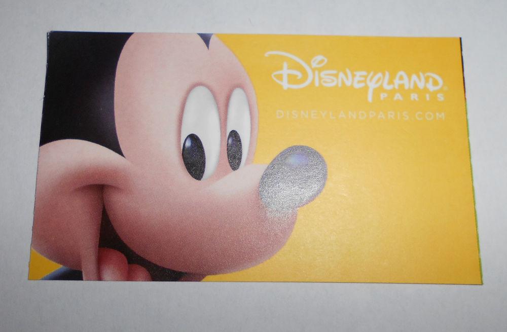 1 entrée adulte pour les 2 parcs Disney pour 2 jours  0 Montluçon (03)