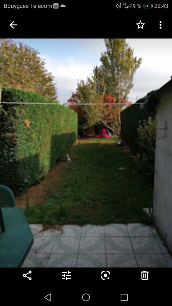 Entretien jardin taille  10 Lille (59)