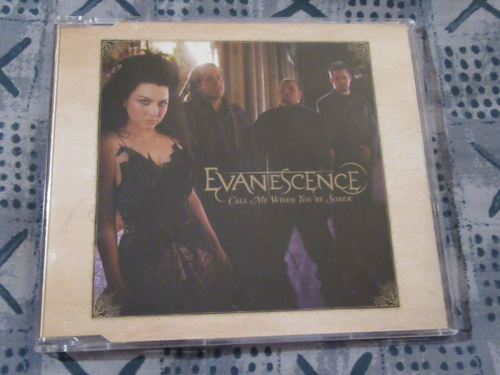 Evanescence: Call Me When You're Sober 10 Saint-Avold (57)
