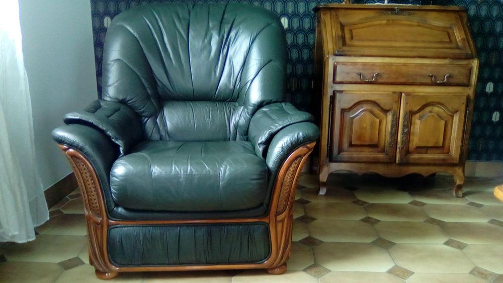 fauteuil cuir et bois 200 Brives-Charensac (43)