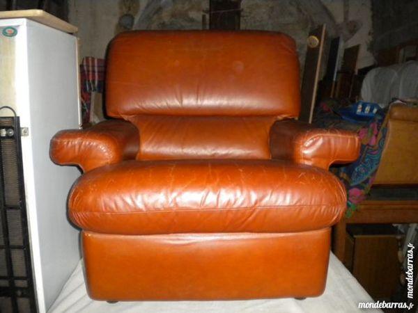 Fauteuil cuir marron 0 Saint-Sève (33)