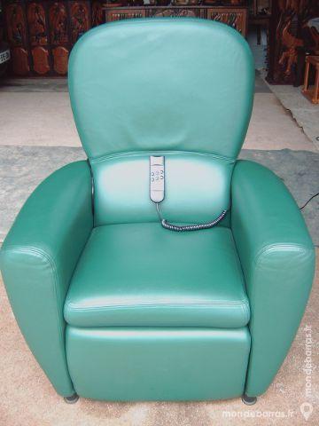 fauteuil en cuir vert tout nf 541 Saran (45)