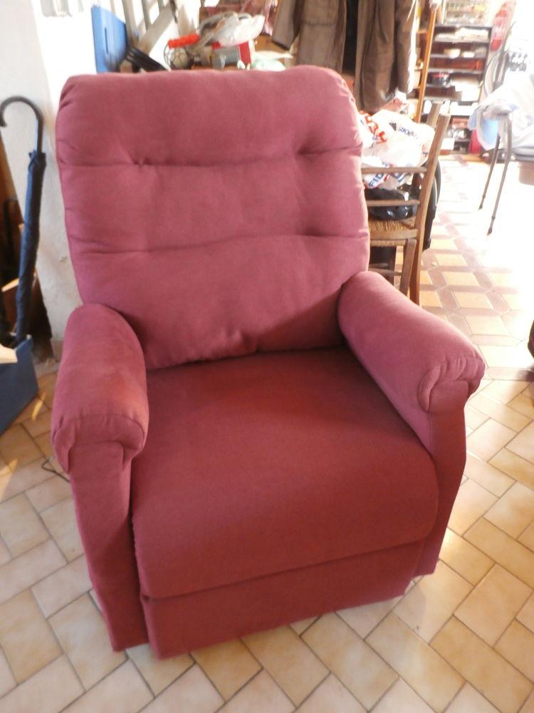 Achetez fauteuil lectrique occasion annonce vente laval 53 wb156861843 - Fauteuil inclinable electrique ...