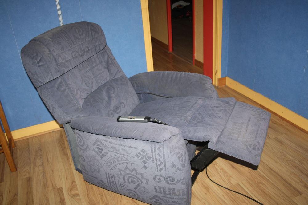 Achetez fauteuil electrique occasion annonce vente criquetot l 39 esneval - Fauteuil relevable electrique ...