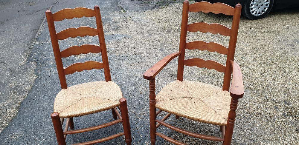 fauteuil paille 80 Trappes (78)