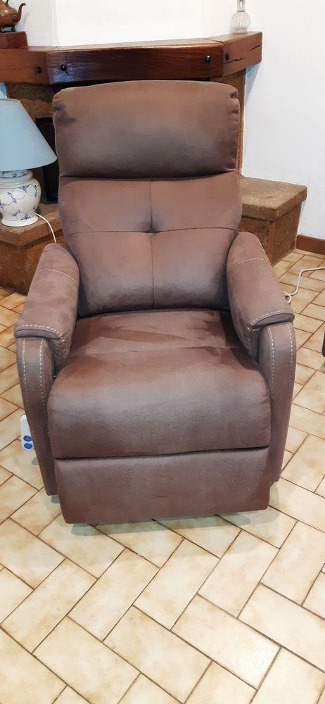 fauteuil releveur 250 Avignon (84)