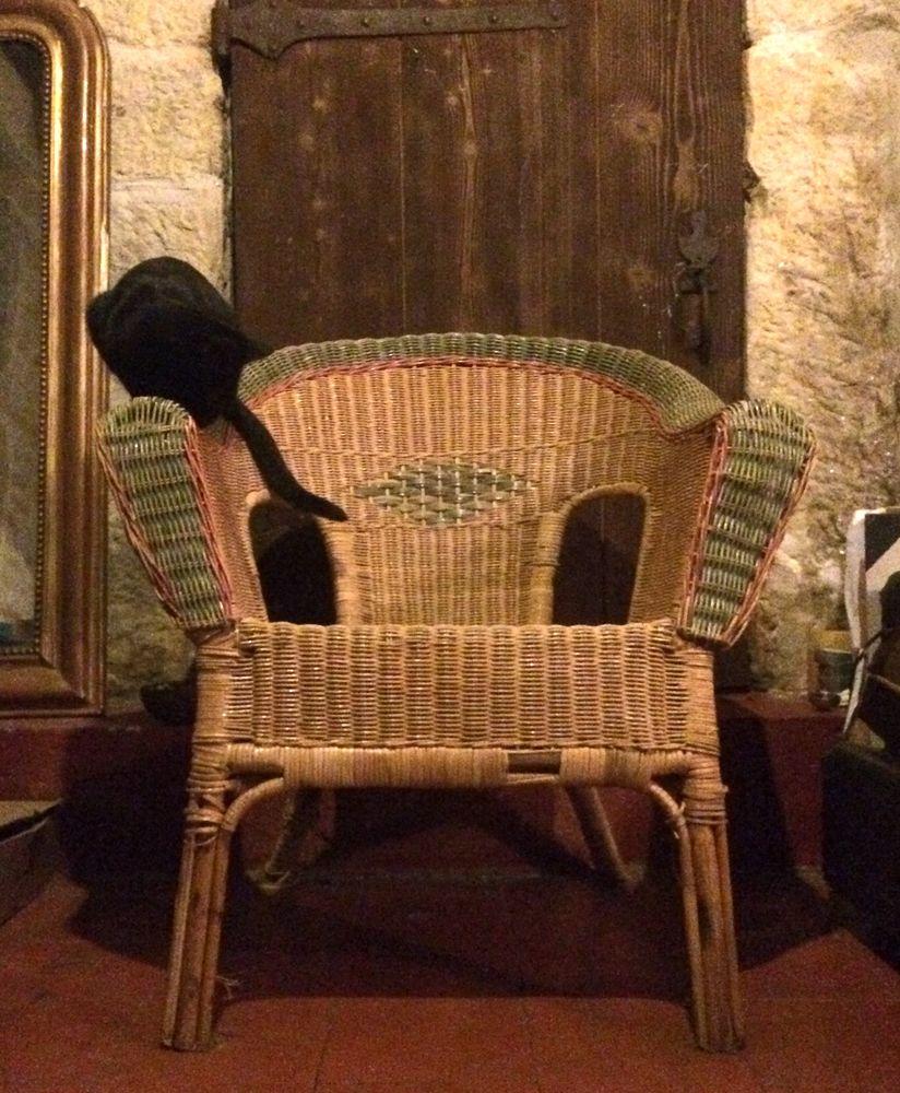Achetez fauteuil en seagrass occasion annonce vente lyon 69 - Peindre fauteuil en rotin ...