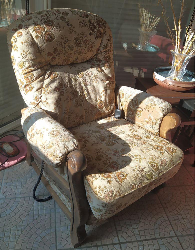 fauteuil 35 Les Rosiers-sur-Loire (49)