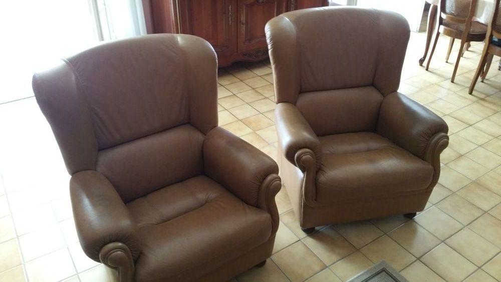 fauteuils cuirs 30 Les Sorinières (44)