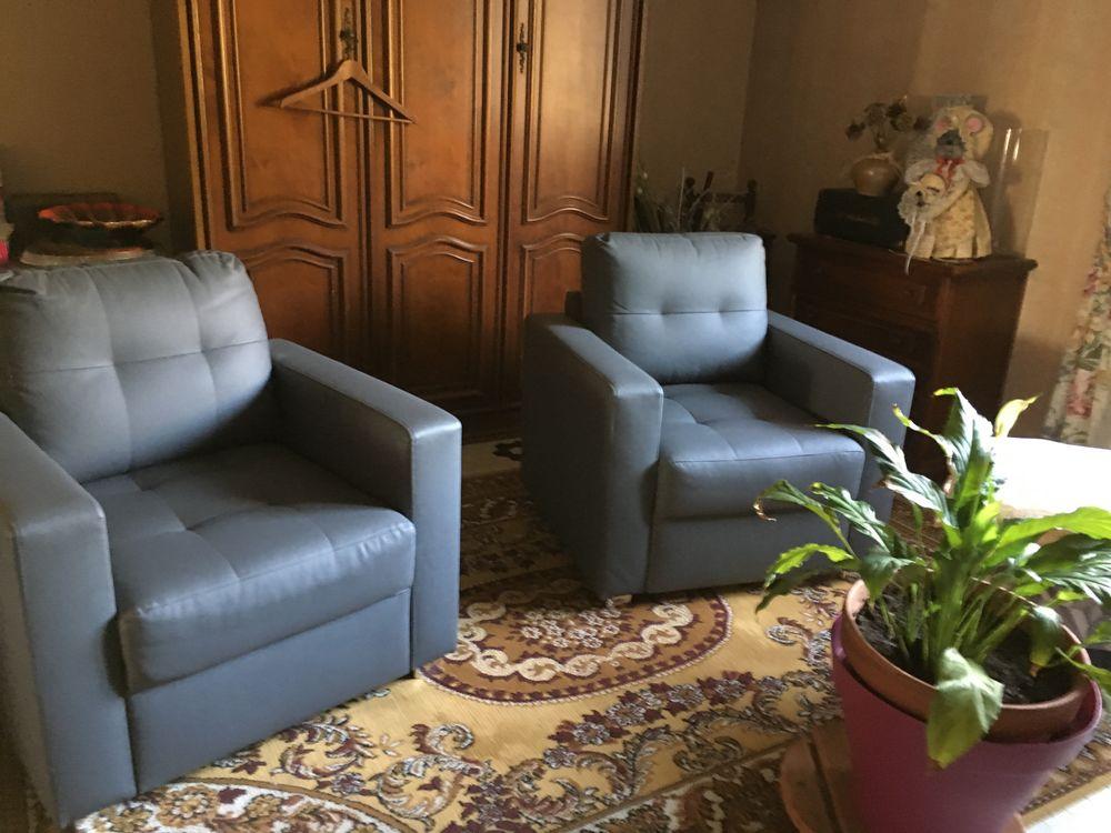 fauteuils salon 150 Sainte-Marthe (47)
