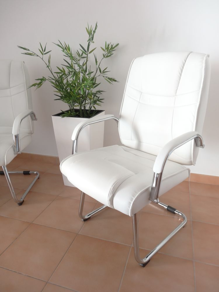 Lot de 2 fauteuils ultra design en simili cuir blanc 200 Vic-la-Gardiole (34)