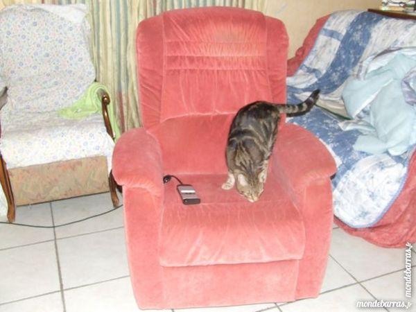 2  fauteuils 120 Saint-Martin-d'Estréaux (42)