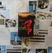 LA FEMME AUX MILLE SECRETS de Barbara WOOD Ed.France Loisirs