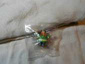 figurine Bridelix 1999 ABRARACOUCIX 4 Montauban (82)