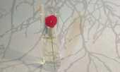 FLACON Eau de Parfum Vapo 15 ml N°2 Neuf 10 Blaye (33)