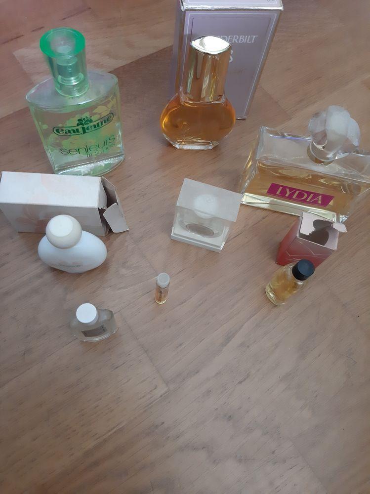 flacons et miniatures parfum 10 Gidy (45)